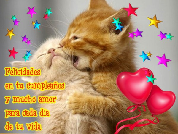 Tarjetas decumpleaños gatos